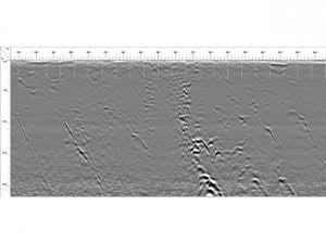 SIR 3000 - Data Example 1